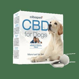 pastilles pour chien au cbd cibapet