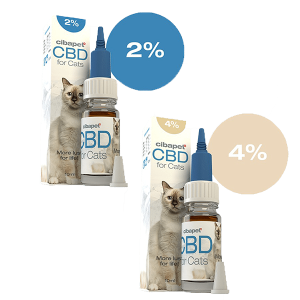 huile de cbd-chats-cibapet-stress-chat anxieux-confort chat-cbd-2%CBD-4% CBD