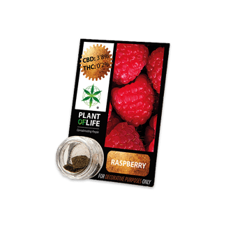 chanvre compressé, compress, amnesia, cbd, 3.8% cbd, plant of life,raspberry, framboise