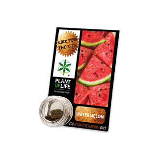 chanvre compressé, compress, amnesia, cbd, 3.8% cbd, plant of life,watermelon, pastèque